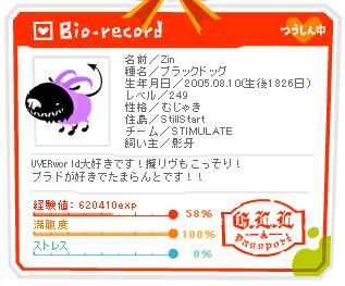 zin_hapiba2010.jpg